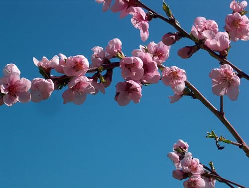Il vostro Guardaroba nel passaggio dall'inverno alla primavera